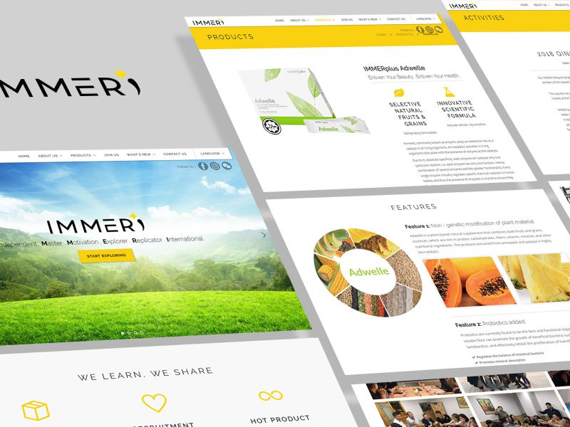 immeri-website-layout